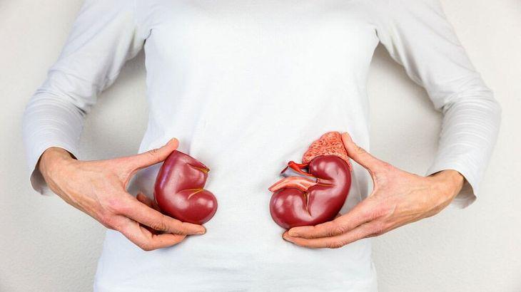 Kidney Transplant Cost in Mumbai - Medmonks