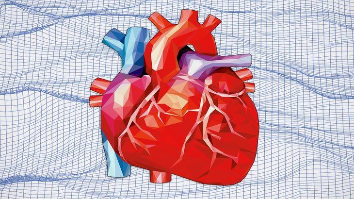 Gewichtsverlustchirurgie und Nierentransplantation