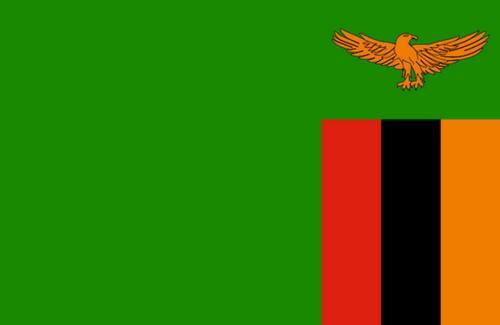 ویزای پزشکی از زامبیا به هند