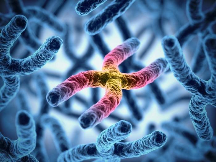 اختلالات کروموزومی در انسان